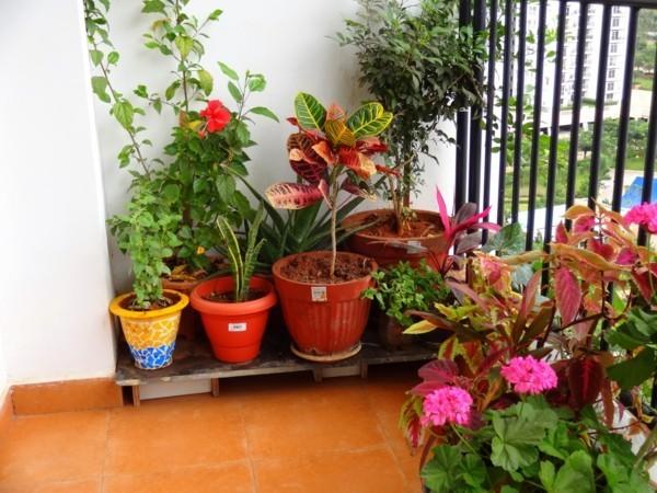 tolle Bodengestaltung Balkon bepflanzen