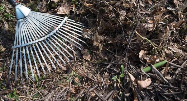 Gartenarbeit im März harken den Garten aufräumen vorbereiten