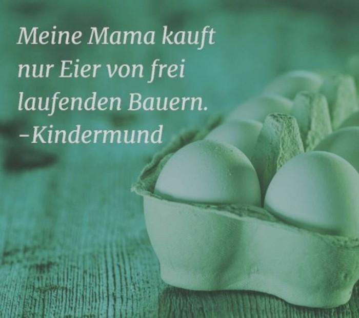 Ostern Sprueche OSterfest OSterdeko Osterhase bauernregel