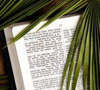 Palmsonntag – von der christlichen Tradition bis zur modernen Hausdekoration