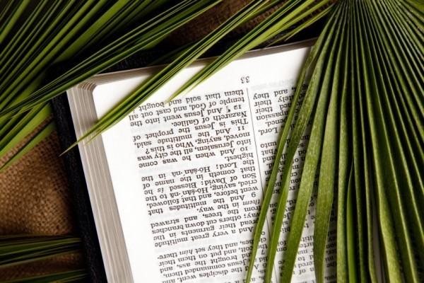 Palmsonntag alte christliche Tradition lebt weiter