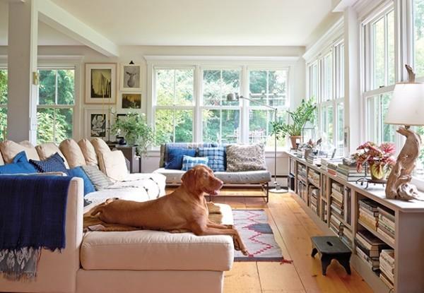Wohnzimmer mit viel natürliches Licht