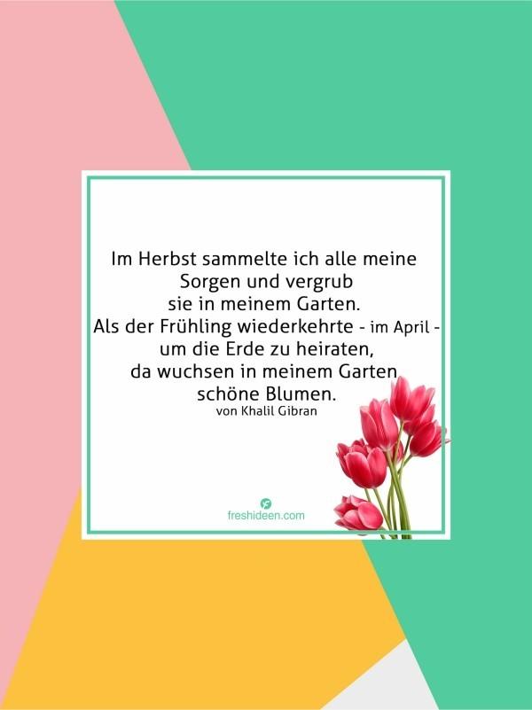 Zitate Frühling neuer Beginn keine Sorgen Blumen im Garten