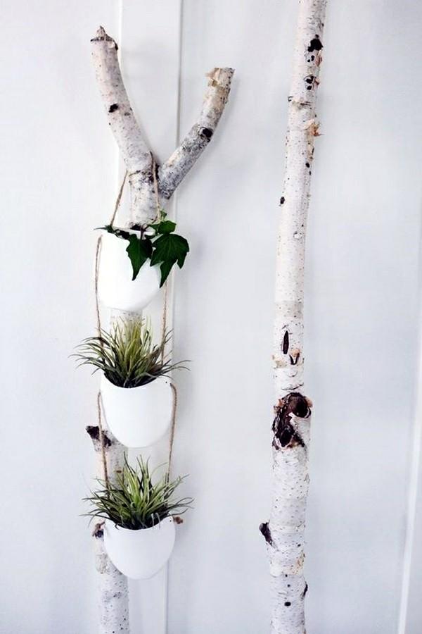 blumenampel selber machen birkenzweige zimmerpflanzen