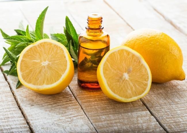 frische minze zitronenöl gesund abnehmen