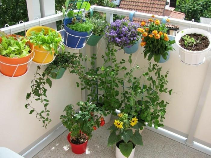 gemuesegarten anlegen blumenkaesten klein balkon