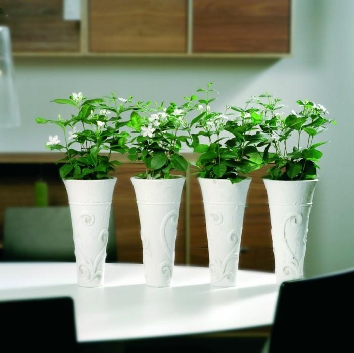 Jasmin Zimmerpflanze Esstisch Dekorieren Weisse Vasen