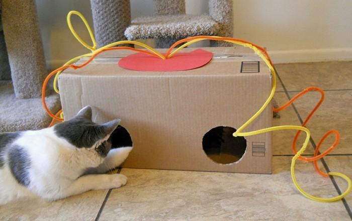 katzenspielzeug basteln katzenhaus