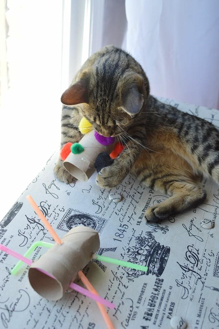 katzenspielzeug basteln mit klopapierrollen