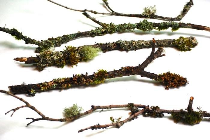 mit moos dekorieren fruelingsdeko naturmaterialien dekoast gestalten mit moos