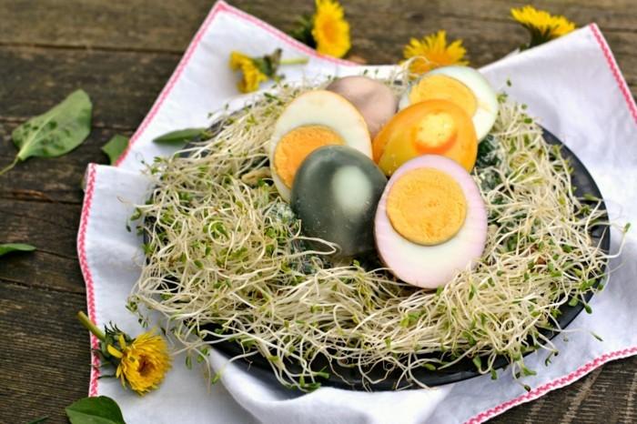 ostereier keime gesunder salat osterrezepte