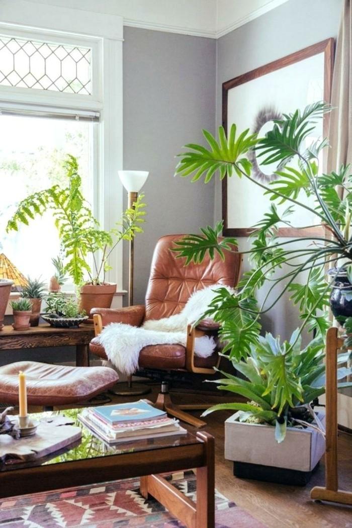 pflanze mit großen blättern gemütlicher wohnbereich dekoideen holz
