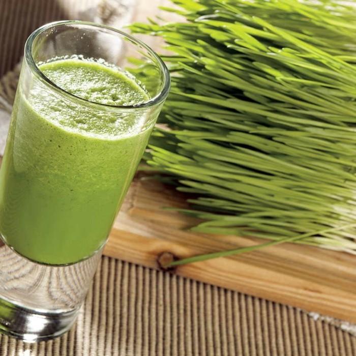 weizengras wachmacher rezept grüne smoothies