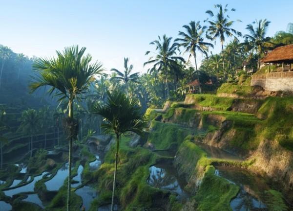 Abenteuerreisen Insel Bali viele Naturschönheiten