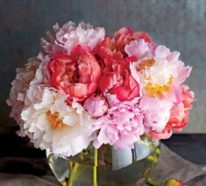 Blumen Bedeutung und Symbolik nach Feng Shui enträtselt