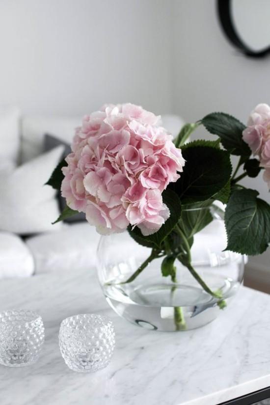 Pfingstrosen Feng Shui Symbol Liebe Ehe Blumen Bedeutung