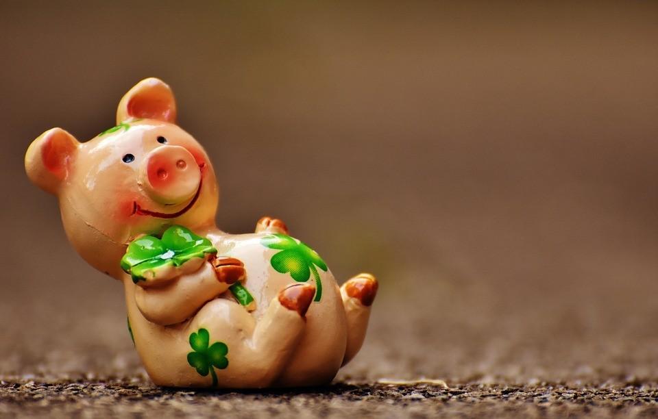 Schwein haben Glück haben lustige Figur Glücksbringer