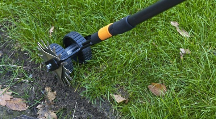 Best Cleaner For Patio Dog Grass