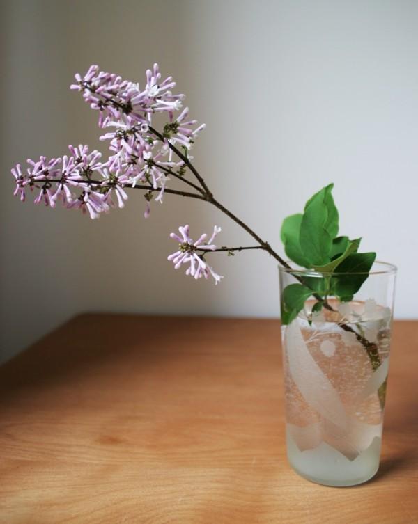 frühlingsblumen deko flieder schlichte deko