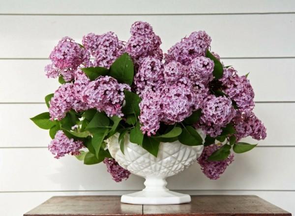 frühlingsblumen deko fliederbusch weißer pflanzengefäß