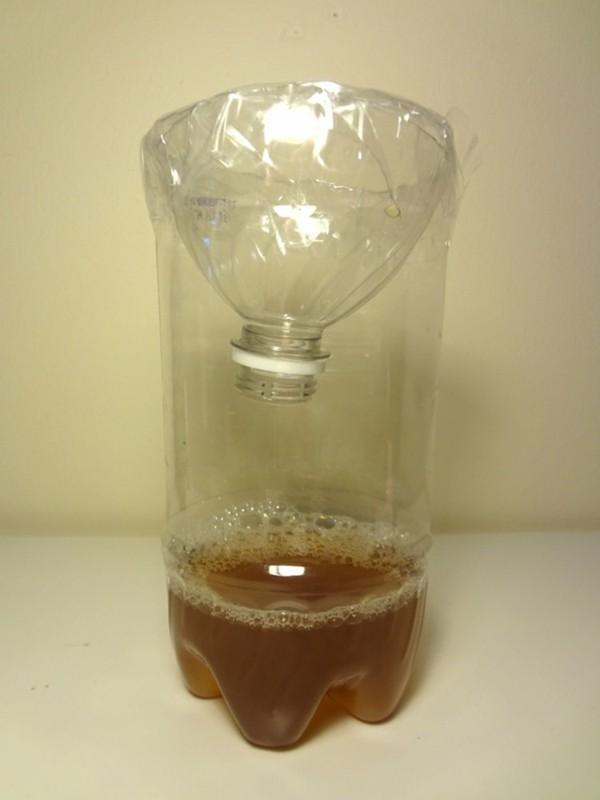 fruchtfliegenfalle selber machen aus plastikflasche bastelidee