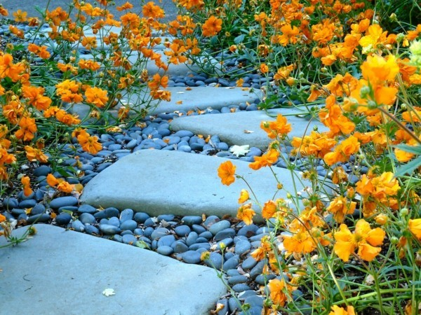 gartenweg ideen kies steinweg gelbe blumen