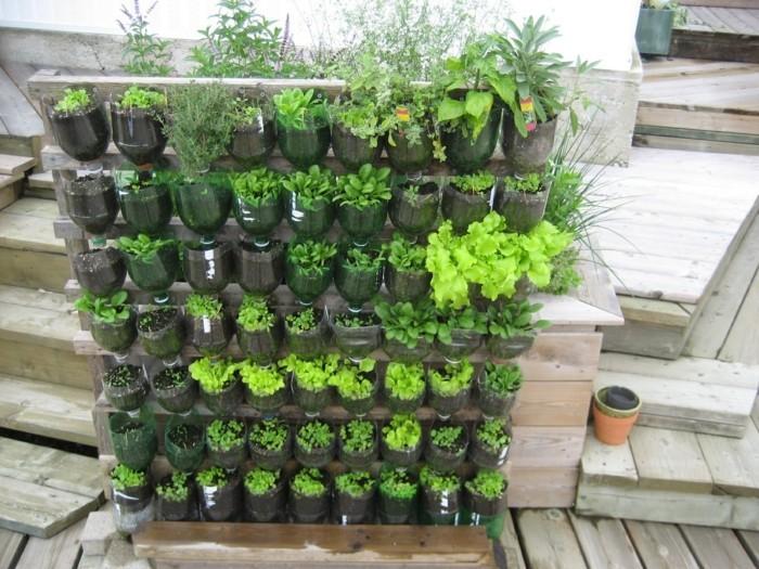 gemuesegarten anlegen pet flaschen