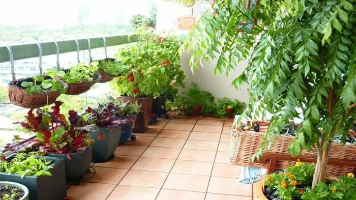 gemuesegarten anlegen froheernte balkon ideen gartengestaltung raum nutzen