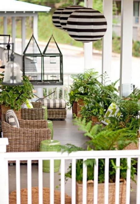 grüne Pflanzen Blumentöpfe Kästen naturnahe Atmosphäre
