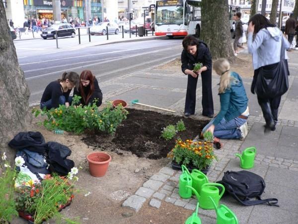 guerilla gardening blumen anpflanzen