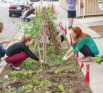 Guerilla Gardening verschönert verwahrloste Stadtflächen