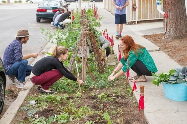 guerilla gardening nachbarschaft pflanzen gartenideen