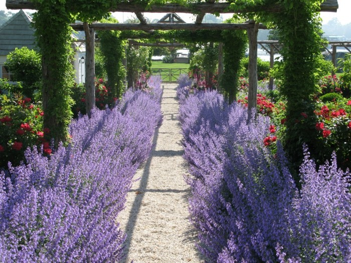 holz pergola lavendel beeteinfassung ideen