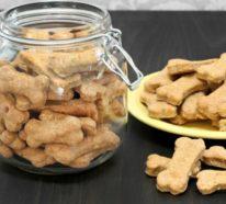 Schnelle Hundekekse selber backen: Grundrezept, extra Tipps und tolle Ideen