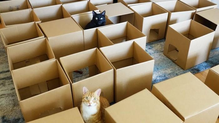 Katzenhaus Selber Bauen 40 Preisgünstige Und Praktische Upcycling