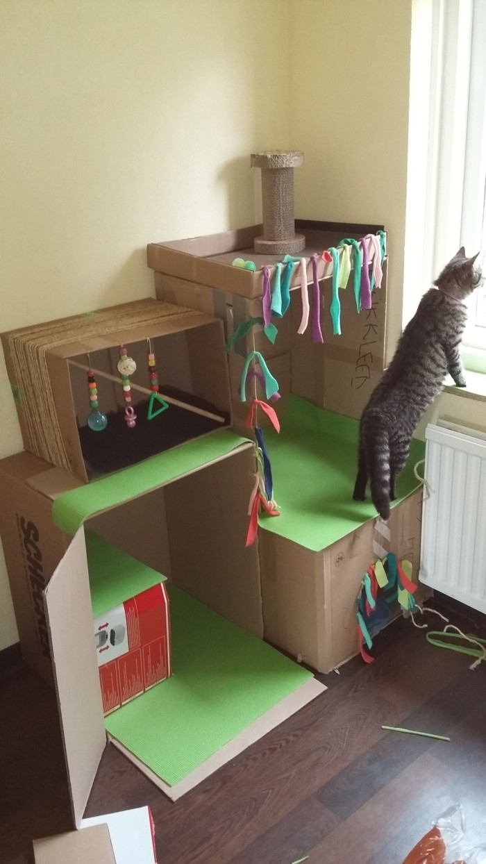 Home Made Cat Toys Easy For Kides