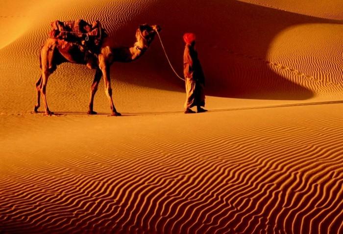 nachhaltig reisen nachhaltig leben regionale hersteller gobi wueste kamel