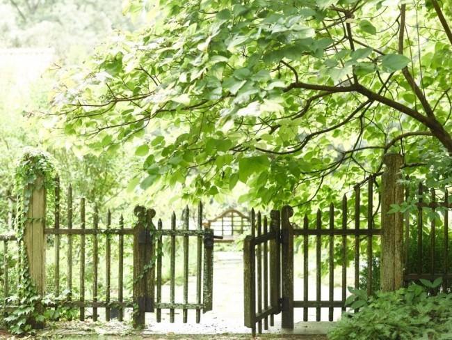 rustikal Gartentor Holz alt viel Grün