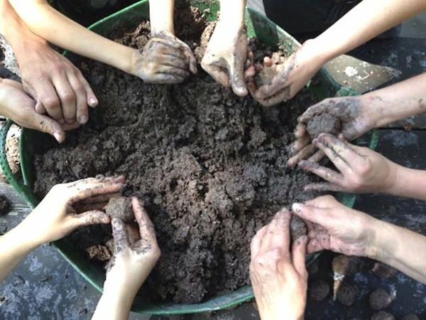 samenbomben selber machen guerilla gardening