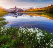 Wunderschöne Wandbilder, die die Ruhe der Natur nach Hause holen
