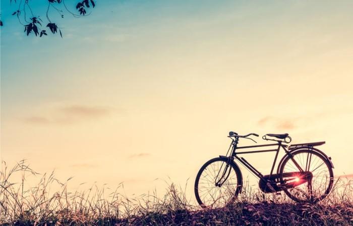 tolles fahrrad wandbilder