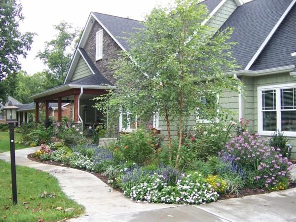 vorgarten gestalten hausbaum gartengestaltung ideen