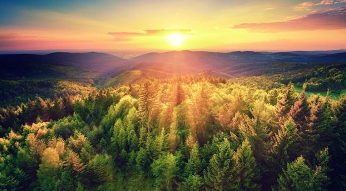 wandbilder sonnenaufgang schön
