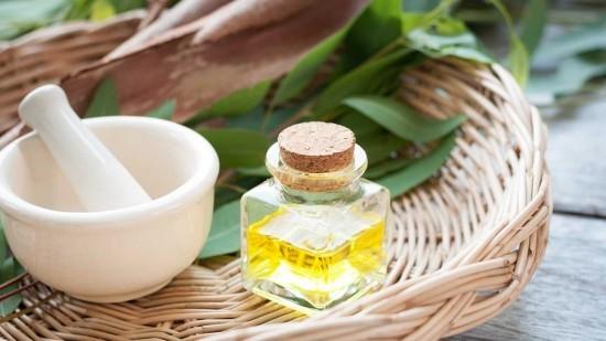 Heilmittel Heilkraft Eukalyptusöl
