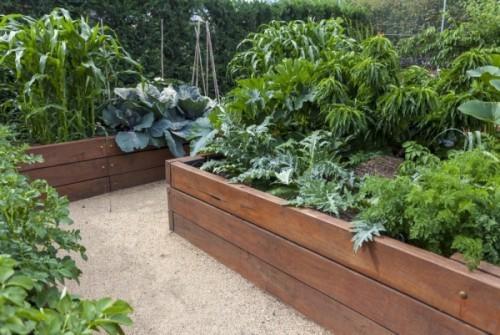 Hochbeete visuelles Drama Gemüsegarten