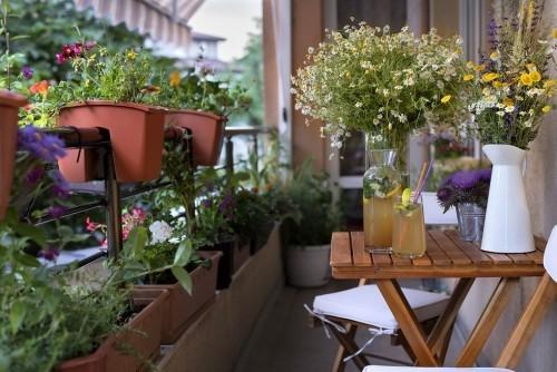 Morgens zeit draußen mit den Balkonpflanzen verbringen entspannt stressfrei in den Tag starten