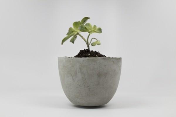 diy pflanzer toller topf aus beton