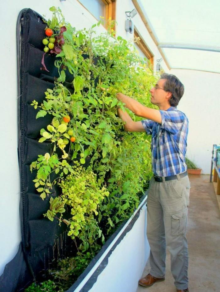 garten-trends sommer 2018 gartentipps gemuesegarten anlegen vertikal