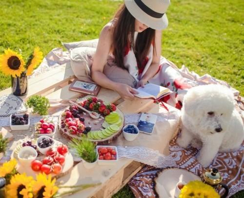 lesen und schreiben picknick ideen