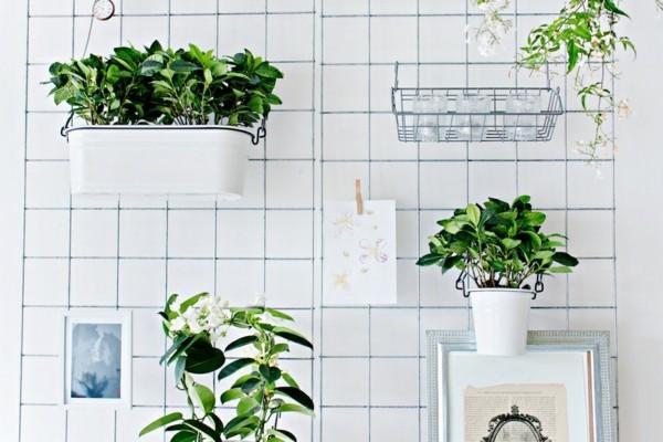 pflanzer tolle wandgestaltung idee